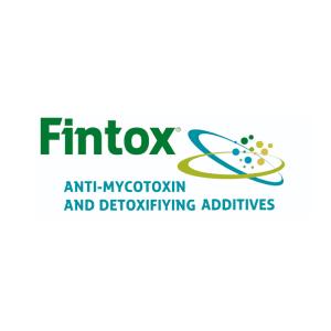 Logo Fintox