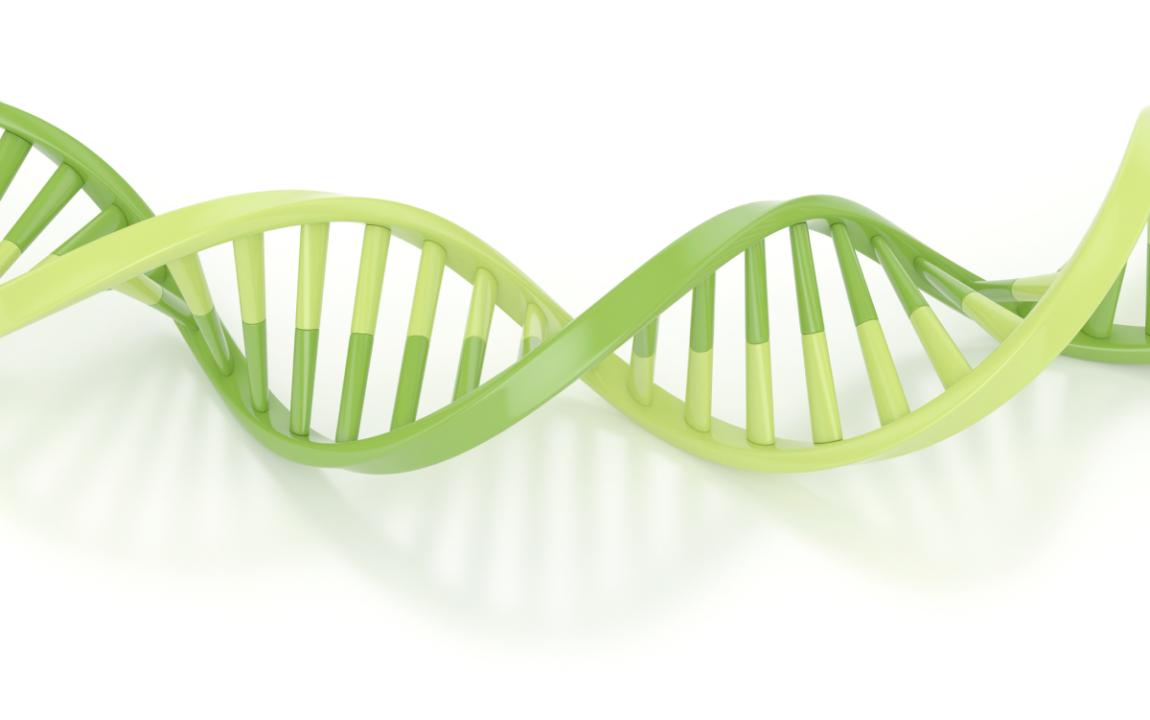 ADN-VERDE-LIPTOSA